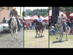 AMAZING DANCING HORSES OF MEXICO - VIDEO - From Amazing Singles - the Hottest Singles Resource on the Web… visit www.amazingsingles.com
