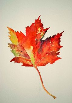 this style leaf with leaf tree tattoo to right Watercolor Water, Watercolor Leaves, Watercolor Paintings, Watercolors, Fall Leaves Tattoo, Autumn Tattoo, Herbst Tattoo, Autumn Art, Leaf Art