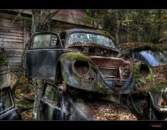 Classic Cars Rotting Projects Sitting And Rotting Picture