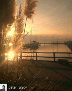 @Regrann_App from @peter.fulepi -  #sunset #sunrise #sun #TFLers #beautiful #sky #skyporn #nature  #photooftheday #instagood #warm #morning  #instasky #all_sunsets #balaton www.nr86.hu - #regrann