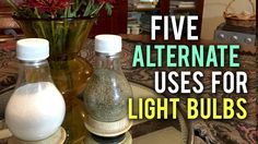 Here are five ILLUMINATING ways to put your old bulbs to good use! Huge thanks to Audible for supporting us, check them out here: http://audible.com/househol...