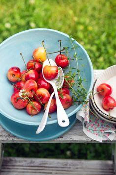 Rainier Cherry Tart Recipe with Lime and Lemon Thyme