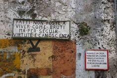 #dante #hell #virtute #canoscenza #poem #divina #commedia #quote
