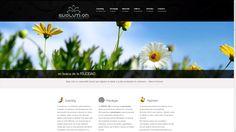 Web realizada para la empresa Evoluti-on Psicología & Coaching como parte de la campaña integral realizada.  www.evoluti-on.es/old