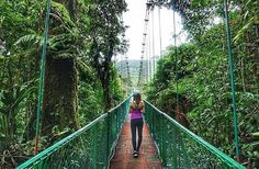 """930 Likes, 9 Comments - Costa Rica Experts (@costaricaexperts) on Instagram: """"""""We went on a trail that led us to 8 different hanging bridges through the cloud forest. It had…"""""""
