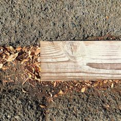 #Oakland #curb #gutter #cement #concrete #asphaltart #lineart #urban #urbanart #urbanarcheology #pavement #hardscape #streetart #modern #modernist #accidentalart #abstractart #abstract #art  #lookdown #unintentionalart #unexpectedart #learnminimalism #minimalist #minimal #uniminimal #asphaltography #roadart #streetmarkings #fall