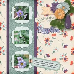 Eggplant Kit & Template: Watch It Grow by Time Out Scraps http://www.plaindigitalwrapper.com/shoppe/product.php?productid=13271&cat=&page=1 Font: Mural Script