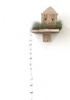 Lotte Fisher's 'Soupstate Hill' installation from DCA degree show,- the art room plant