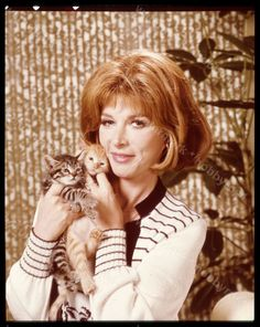 0 Lee Grant with kittens Lee Grant, American Actress, Actresses, Actors, Vintage, The Originals, Couple Photos, Movie Stars, Writers