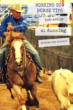 Working cow horse tips Bob Avila & Al Dunning