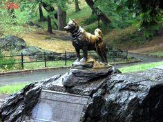 Balto Statue   Central Park New York