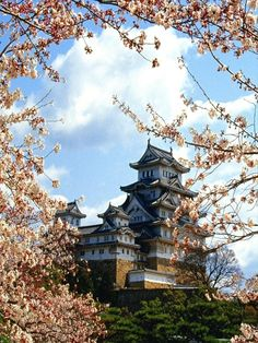 Asian architecture and spring blossoms.