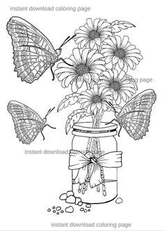 Adult Coloring Page Butterflies Daisies Mason Jar By Adventacular