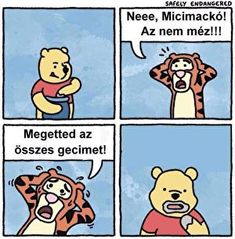 Funny pictures about Sweet Pooh. Oh, and cool pics about Sweet Pooh. Also, Sweet Pooh. Memes Humor, Funny Memes, Funniest Memes, Humor Humour, Safely Endangered, Refugees, 4 Panel Life, Einstein, Pokemon