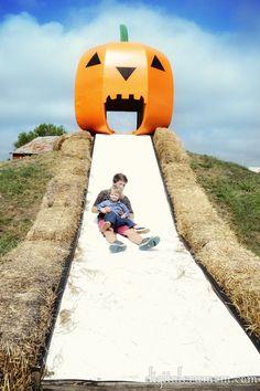 Visit the KC Pumpkin Patch and Corn Maze in Gardner, Kansas as part of my Fall Bucket List for Kansas City.