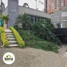 apoyándolos en el diseño, mantenimiento y cuidado de sus prados y jardines. #TerraPradosyJardines #Landscaping #MantenimientodeJardines #Paisajismo #CortedeCésped Prado, Medellin Colombia, Landscaping