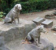Cimetière des Chiens Paris Pet Cemetery built in 1899.