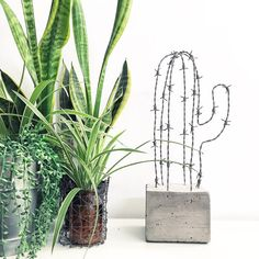 Concrete and Wire Cactus Cement Art, Concrete Crafts, Concrete Art, Concrete Projects, Concrete Design, Diy Projects, Art Concret, Art Deco Decor, Indoor Flowers
