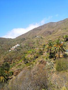 Masca on upea luonnonkaunis laakso komeiden vuorten keskellä Teneriffalla. Laaksoon vievät kapeat serpentiinitiet ovat ainoa reitti nähdä tämä saaren helmi. Lue lisää blogista! // www.kookospalmunalla.fi // Masca is a wonderful naturally beautiful valley in the middle of massive mountains in Tenerife. The narrow serpentine roads are the only way to reach the valley and the most beautiful spot on the island. More on blog! // #masca #tenerife #teneriffa #kookospalmunallablog #matkablogi Naturally Beautiful, Most Beautiful, To Reach, Canary Islands, Safari, Middle, Country Roads, Mountains, Nature