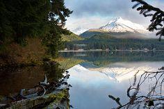 Juneau, Alaska Adventure and Tour... 8 day/7 night Honeymoon Package *PERFECT*