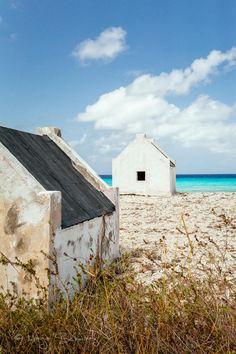 Day 11 @ Bonaire, Netherlands Antilles by MARJA SCHWARTZ on 500px