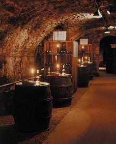 Wine tour ~ Caves Patriarche Pere et Fils - Beaune, France.    ᘡղbᘠ