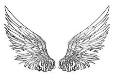 Illustration of Wings. Vector illustration on white background. Black and white style. vector art, clipart and stock vectors. Full Sleeve Tattoo Design, Wing Tattoo Designs, Tribal Sleeve Tattoos, Wing Tattoos, Pencil Art Drawings, Tattoo Drawings, Lucifer Wings, Angel Wings Drawing, Wings Sketch