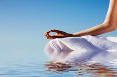 La Aromaterapia: Aceites que curan – Estilo de Vida Blog Feng Shui, Reasons To Live, Riviera Maya, Doterra, Ayurveda, Reiki, Chakra, Caribbean, Exotic