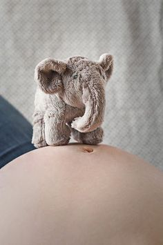 maternity pictures cute elephant - only with a cupcake.