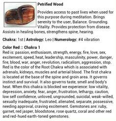 Petrified Wood gemstone