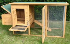 3rd view of nice coop. Look at all the ways to sneak in there for those eggs!
