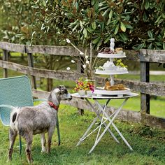 S'mores Station - Virginia Farmhouse Summer Party - Southern Living