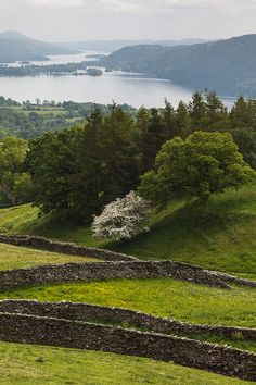 Orrest Head to Ambleside | by alh1