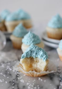 Mini Vanilla Bean Cupcakes with Vanilla Buttercream Frosting