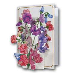 From 2.99 Sweet Peas - A 3d Pop Up Greeting Card From The Pictoria Press