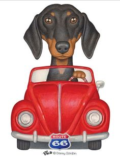 Dachshund Clube - Danny Gordon Volkeswagaon and a Dachshund with a route 66 license plate Arte Dachshund, Dachshund Puppies, Dachshund Love, Dogs And Puppies, Daschund, Weiner Dogs, Scottish Terrier, Training Your Dog, Dog Art