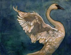 The Swan Painting  - The Swan Fine Art Print Douglas Girard