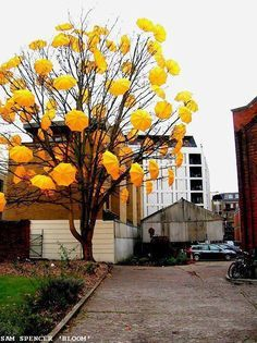 We have gathered 30 Impressive Street Art Examples and we think that you should definitely see them. Street Art comes in a variety of forms the most common being graffiti. Ironically enough, this article contains less graffiti and more amazing stree… Land Art, Umbrella Tree, Yellow Umbrella, Street Art, Urbane Kunst, Nature Tree, In The Tree, Fantastic Art, Mellow Yellow