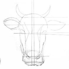 Bull Cow, Cow Head, Horse Drawing Tutorial, Cow Drawing, Hand Lines, Cow Art, Drawing Reference, Animal Drawings, Archaeology