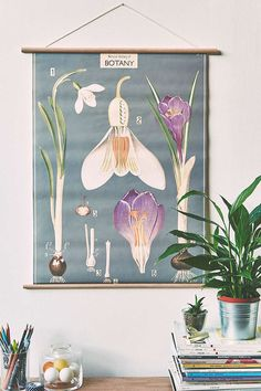 Plumes Poster - Urban Outfitters
