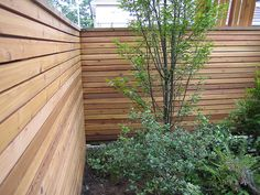 I may have already pinned this fence, but the awesome thing about it is that it is a basic fence with the inside clad in cedar 1x3s. #fence #yard #backyard