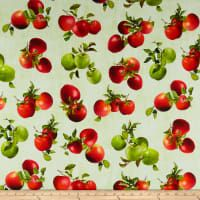 Quilting Cotton Shop Online at fabric.com Summer Picnic, Summer Fruit, Sushi Blue, Halloween Gingerbread House, Egg Toast, Watermelon Rind, Very Hungry Caterpillar, How To Squeeze Lemons, Sweet Cakes