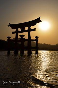 Sunset Torii Miyajima, Japan