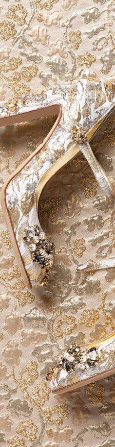 Dolce & Gabbana | LOLO❤︎