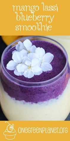 Mango Lassi Blueberry Smoothie [Vegan] @mollydiana http://www.onegreenplanet.org/vegan-recipe/mango-lassi-blueberry-smoothie/  #eatfortheplanet #vegan #veganshare #vegansofig #plantbased #plantpower #healthy #eatclean #yum #foodporn #food #veganfoodporn #veganfood #vegancooking #veggieinspired #plantbasedcooking #plantbased #veg #eatgreen #eatclean #veganfoodshare #meatfree #meatless #dairyfree #plantpower #whatveganseat