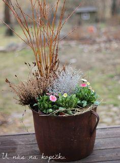 U nás na kopečku Easter, Plants, Easter Activities, Planters, Plant, Planting