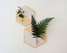 50 Unique DIY Wall Art Ideas For Your House To Try. Photo canvas art on walls has proven so popular because of the quality of the image reproduction and this, in turn, is . Diy Wand, Wood Planters, Hanging Planters, Diy Wall Planter, Succulent Planters, Hanging Shelves, Succulents Garden, Wall Shelf Decor, Diy Wall Decor
