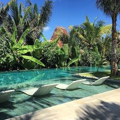 Having a pool sounds awesome especially if you are working with the best backyard pool landscaping ideas there is. How you design a proper backyard with a pool matters. Tropical Pool Landscaping, Backyard Pool Designs, Swimming Pools Backyard, Swimming Pool Designs, Garden Pool, Backyard Landscaping, Driveway Landscaping, Living Pool, Piscina Interior