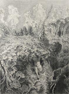 Max Svabinsky (1873 - 1962), Sleeping Tragopan, 1939