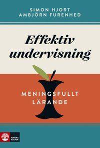 Effektiv undervisning : meningsfullt lärande (häftad)